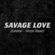 دانلود آهنگ Jason Derulo SAVAGE LOVE