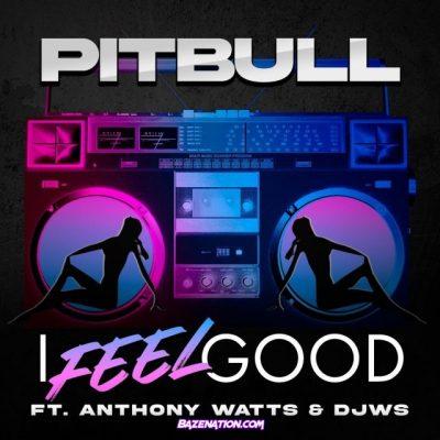 دانلود آهنگ Pitbull I Feel Good feat Anthony Watts and DJWS