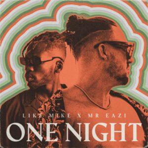 دانلود آهنگ Like Mike One Night feat Mr Eazi
